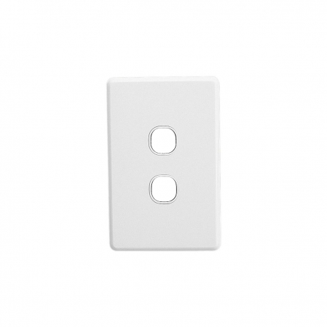 Double Gang Wall Plate
