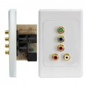Wall Plate Kit Component Video and Stereo Audio over Cat5e